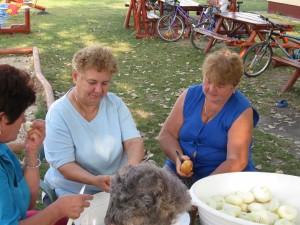 2008.09.12. Készületek a Templomosi falunapra   036